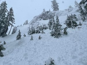 Looking up where we triggered the avalanche