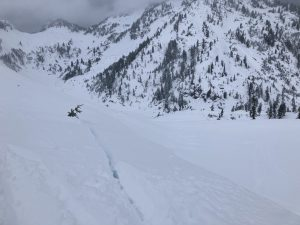 Cornice failure/cracking with ski stomps on small test slope. North aspect, 4500ft near Austin Pass.
