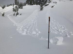 Minor wet loose activity near Herman Saddle. South aspect, 5200ft