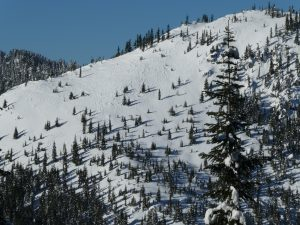 Raised tracks on SSE slope of Tye Peak