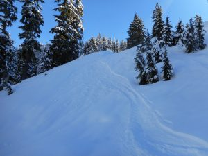 The extent of sluffs from ski tracks