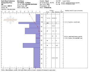Snowpilot pit profile at 4150'