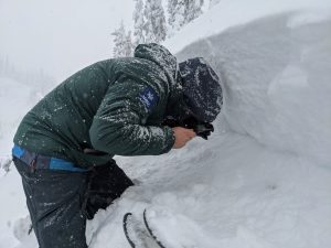 NWAC forecaster identifies rounding facets as the weak snow that the avalanche ran on