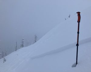 Shallow skier triggered avalanche (D1) on a north aspect at 5000ft