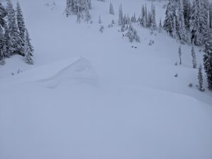 Fresh cornice formation from the recent W winds cross loading features on the S-facing slopes below Skyline Trail