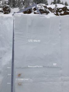 Shovel Shear Test - ENE aspect - Miriam Creek 6200'