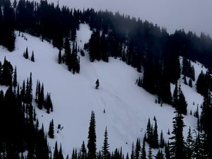 Two large wet slabs crossed the Valley Rd. A common snowshoe and cross country ski trail.