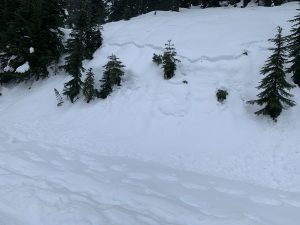 Many smaller slopes along the Valley Rd also had 30cm wet slab crowns on them.
