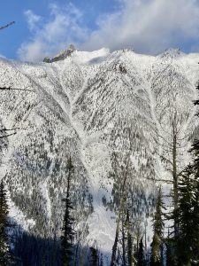 D2.5 avalanche in Pine Creek originating from the alpine start zone and running its classic track to to the valley deposition zone Dec 22 2020