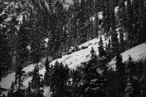 Climax crowns within the Alpental permit area, seen from Lot 4. Image licensed CC-BY-NC-SA.