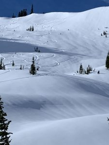 Ski tracks on the E aspect from today, mine are far right on slope 35 degrees.