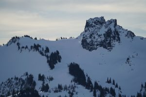 Challenged by distance and shadows on N-facing terrain, but I couldn't find any evidence of a Wet Slab cycle or more recent wind slab in the Tatoosh.
