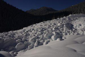 Observed debris/runout of large slide near 4000 ft elev on SW Aspect of Lichtenberg.