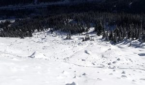 Debris from a size D2.5 avalanche that occurred on 12/19-20. Licthenberg Mtn SE, 4,000ft