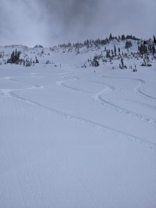 Great turns were available all day with filtered sunlight on the South facing slopes.