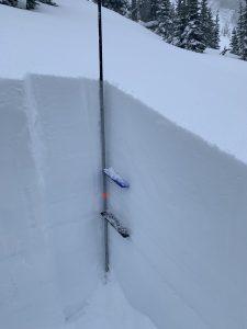 Snow profile: E, 6100' Miriam Creek.