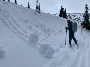 Big ol' snow rollers!