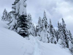 ~2ft new snow.