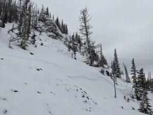 Small wind slabs representative near treeline on NW
