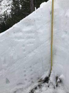 Snow profile.