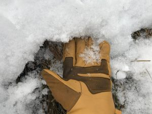 Larger grains at base of snow.