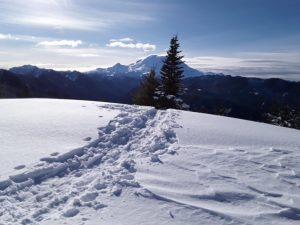 Snowshoe track through wind slab on solar aspect.