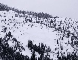 Slab avalanche. Lower skiers left in Moonlight area, E, 4400ft. Crown was at least 150ft wide