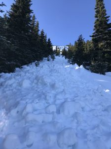Avalanche debris field in path of switchbacks