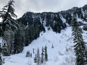 A north facing D2 wet snow avalanche from Jan 11-12.