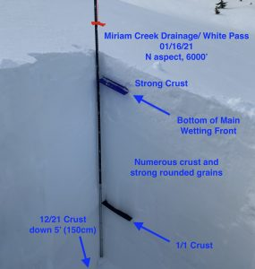Snow profile from the second bowl area in the White Pass backcountry.