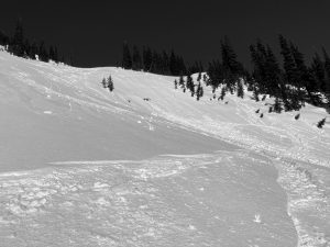 A very small wet loose avalanche that only ran on slopes steep enough (center) from skiing, but did not run on the slightly lower angle left side.  A few natural rollerballs too.