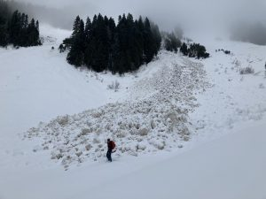 Avalanche debris from the largest glide avalanche.
