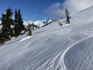 Variable wind affected surfaces were present above treeline
