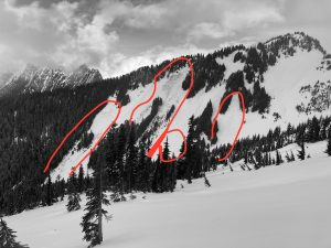 Numerous glide avalanches and cracks from around 1/13 were visible on south facing slopes.