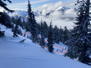 A small avalanche on a subtle treed west facing slope at around 5300ft