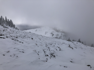 Wind scoured area on exposed SW ridge near Norse Peak (46.9596, -121.4580 or so)