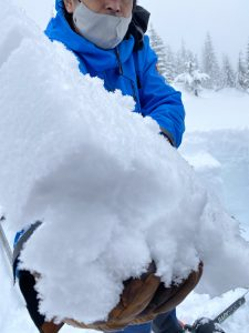 Buried surface hoar layer 18cm down at Yodelin near Stevens Pass