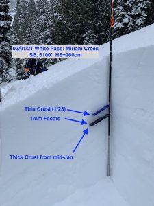 Snow profile in Miriam Creek