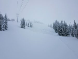 This slide path is skier's right of tumwater along chair two. Looks skier triggered.