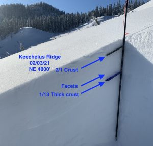 Snow profile on NE aspect