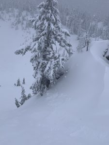 Crown of triggered avalanche from 2/14 in Gunsight Chutes
