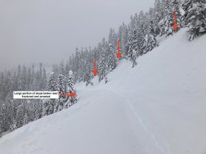 FS road 1230 near Blue Lake/Dock Butte Trailhead (south aspect, 3800ft). Several avalanches ran from above and crossed the road. Most were small (D1, red arrows) with 1 D2.