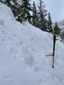 At elevations below 3,000 ft we found moist surface conditions and were able to easily generate rollerballs and trigger very small wet loose avalanches