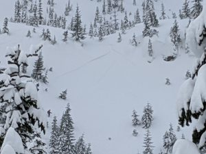 better photot of the full size of the avalanche.