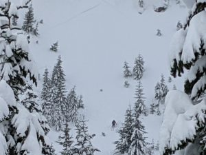 skiier went into the left side of the trees (facing the mountain) to avoid the run off. was able to ride out once the avalanche subsided. the avalanche trigger is at the very top of the photo.