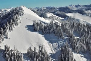 A large slab avalanche on Evergreen Mountain. Note where it stepped down to the deeper slab.