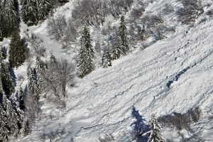 Avalanche debris crossed the Monte Cristo Trail.