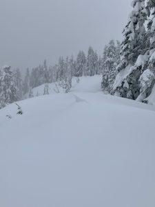 Small cornice at 5300 ft on NE aspect