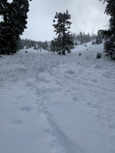 Lots of avalanche debris in the cold creek and roaring ridge area from last cycle