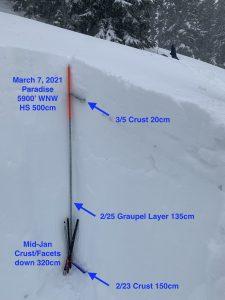 Snow profile. Edith's Knob. 6100', WNW